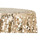 champagne payette sequin